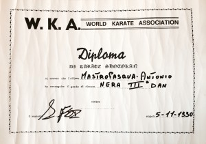 03 - WKA - Karate Shotokan - 05.11.1990