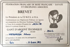 08 - FFBFSDA - GAT - 15.02.1995
